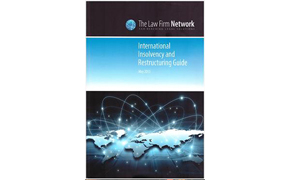 The International Insolvency and Restructuring Guide by the Law Firm Network, 2013.